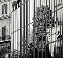 Il Mito di Roma - Palazzina Polifunzionale in Via Campania (13 / 15) by Giulio Menna