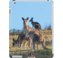 Hello there iPad Case/Skin
