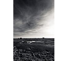 Bull Island Photographic Print