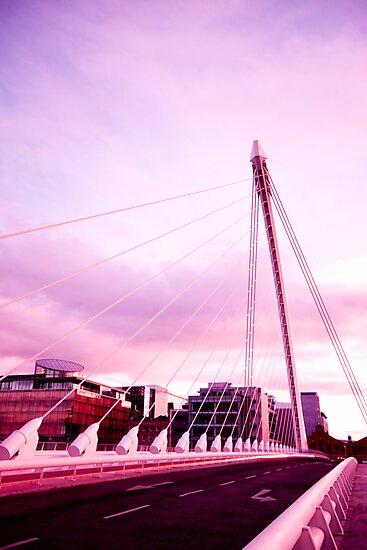 Samuel Beckett Bridge by Alessio Michelini