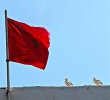 Moroccan Flag, Seagulls, Harbour Wall - Essaouira, Morocco by gorecki79