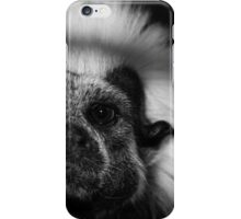 Tamarin Portrait iPhone Case/Skin