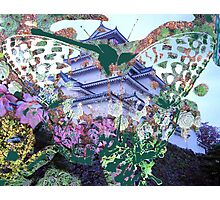 Butterfly Cabbage Cactus Castle Photographic Print