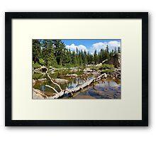 Forest Lake - Two Framed Print
