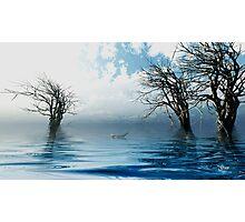 Elfin Boat Photographic Print