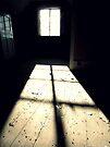 Beyond the confines ~ Pool Park Asylum by Josephine Pugh