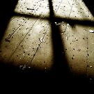 Chiaroscuro ~ Pool Park Asylum by Josephine Pugh