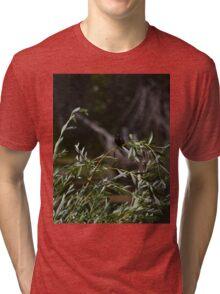 red winged blackbird Tri-blend T-Shirt