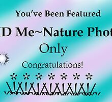ID Me ~ Nature Photos Only Banner Challenge by Carla Wick/Jandelle Petters