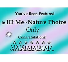 ID Me ~ Nature Photos Only Banner Challenge Photographic Print