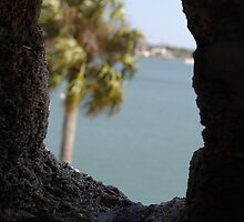 Coquina Lookout by LaWeez