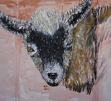 Nigerian Dwarf Dairy Goat by echoesofheaven