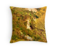 Unstable Land, Cliff side, Discovery Park, Seattle, WA Throw Pillow