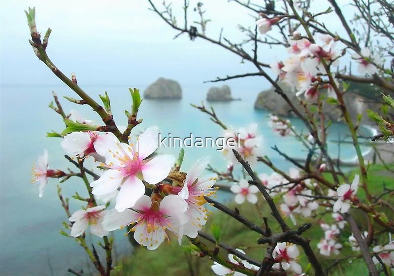 Spring morning by kindangel