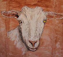 Saanen Dairy Goat by echoesofheaven