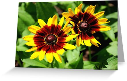 Flowers for 2!!! ©  by Dawn M. Becker