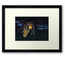 Japanese Hornet Framed Print