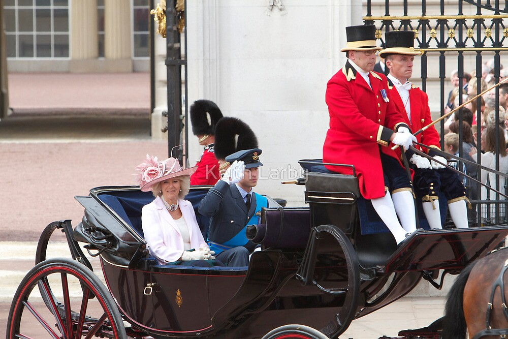 Prince William Saluting with Camilla. by Keith Larby