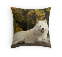 Back off!!! Throw Pillow
