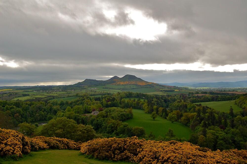 Eildon Hills, Scotland by ScottishVet