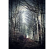 Autumn Tunnel Photographic Print