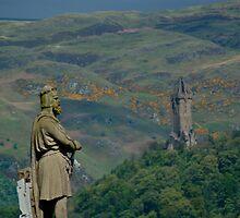 Staring at a hero by ScottishVet