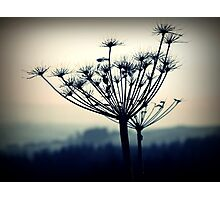 Welsh Hills Photographic Print