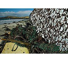 Goose barnacles Photographic Print