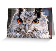 Gandalf the Eagle Owl Greeting Card