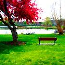 Spring of 2009 by BigD