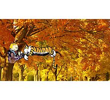 Calvin & Hobbes Sleeping On The Tree Photographic Print