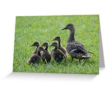 No, This Way, You Silly Goose--Err, Duck! Greeting Card