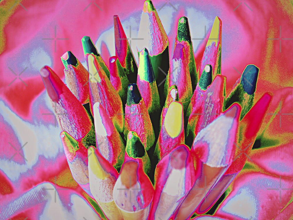 Bouquet of Pencils by Susan S. Kline
