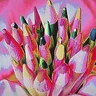 Bouquet of Pencils by Susan S. Kline