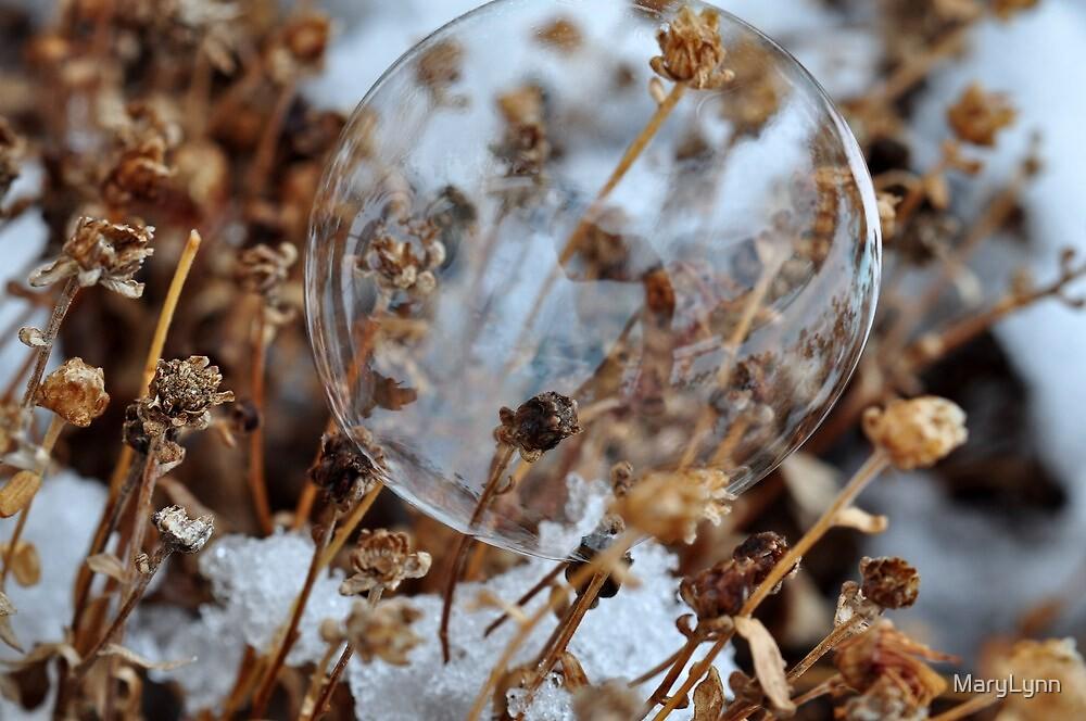 Snow Bubble by MaryLynn