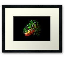 Panther Chameleon Framed Print