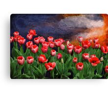 Special order Sunset for my tulip garden Canvas Print