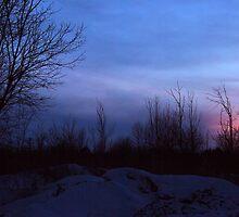 Winter Landscape Twilight by Joanne  Bradley