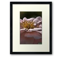 With my Shadows Framed Print