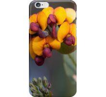 Yellow-eyed Flame Pea iPhone Case/Skin