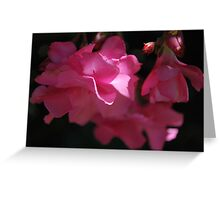 Oleander Hope Greeting Card