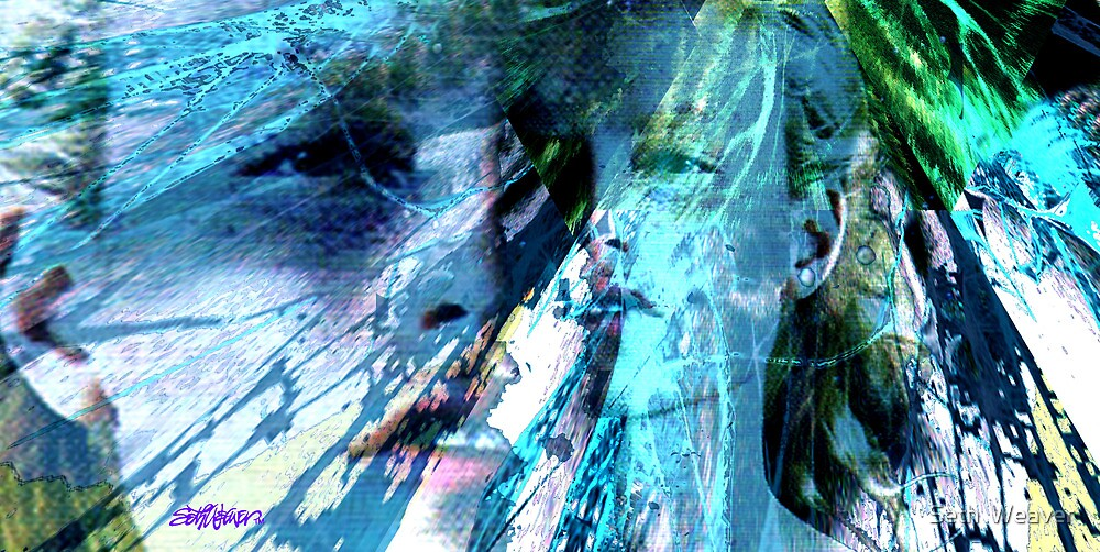 Strife by Seth  Weaver