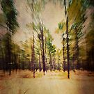 Forest of the Mind by LauraMcLean
