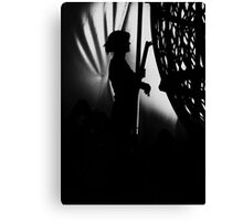 Behind the Scenes at the Circus  Canvas Print