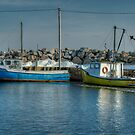 Fox Point Lobster Boats by Roxane Bay
