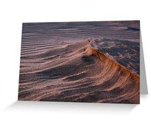 Oceano Dunes at Sunset Greeting Card
