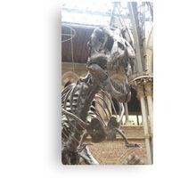 Tyrannosaurua Rex Canvas Print