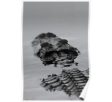 Prehistoric / Alligator Abstract Poster
