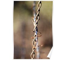 Rustic Barbwire Poster