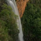 Fitzroy Falls .. all the way down by Michael Matthews